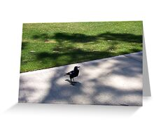 Magpie - 19 11 12 Greeting Card