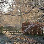 Frosty Kenilworth by John Evans