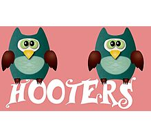 Hooters cute owls Photographic Print