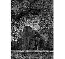 Half Dome In Portrait Photographic Print