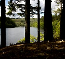 Loch Drunkie by PatisPaton