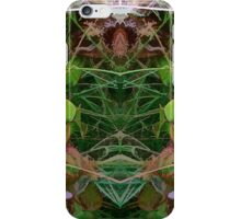 Cycle 4 - Autumn iPhone Case/Skin