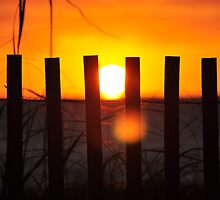 Delray Beach Sunrise through the dune fence by khphotos
