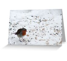 Christmas with a Robin Greeting Card