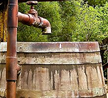 The Old Watering Barrel by mamasita