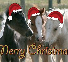Foal Christmas by Diana-Lee Saville