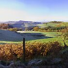 A frosty Sunday morning in the Welsh Hills by Jacqueline Longhurst