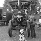 Doggone Bygone 2 by Graham Povey