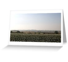 Potato fields, Lincolnshire Greeting Card