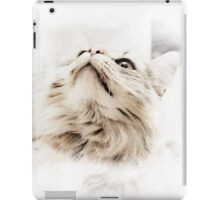 Maine Coon iPad Cover iPad Case/Skin