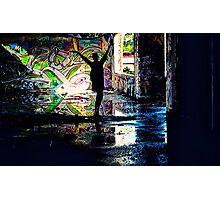 Colors Dance Photographic Print