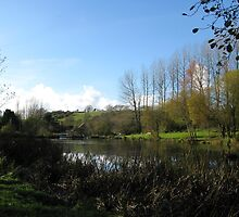 Lake At Mangerton Mill  Dorset UK by lynn carter