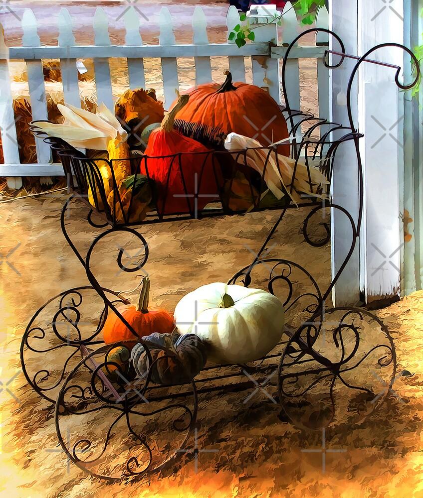 Pumpkins On Display by CarolM