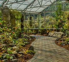 Rhododendron Species Botanical Garden Conservatory by Marilyn Cornwell