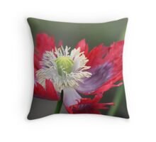 Aren't I the pretty one? Throw Pillow