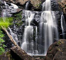 Stevenson Falls by Mark Cooper