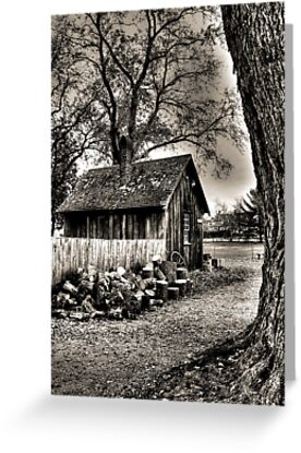 Out to the Woodshed by Carrie Blackwood