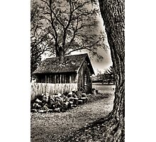 Out to the Woodshed Photographic Print