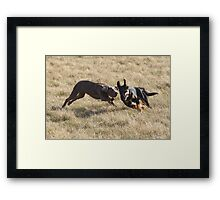 Bernie and Mia Framed Print