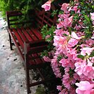 Walkway - Gourley home / English Bench by JeffeeArt4u