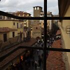View from Vasari Corridor by Kitrina Arbuckle