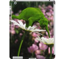 Evolution & Balance IPad Case iPad Case/Skin