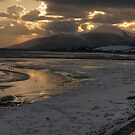 Mournes Mountains from Murlough Inner Bay by Jon Lees