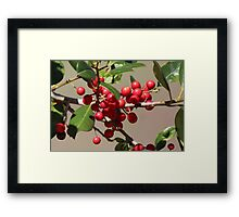 Holly Jolly Berries Framed Print