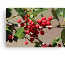 Holly Jolly Berries Canvas Print
