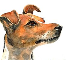 Jack Russell Dog by Croftsie