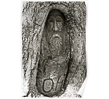Carving near the Dig Tree Poster