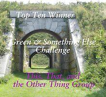 Top Ten - Green & Something Else by quiltmaker