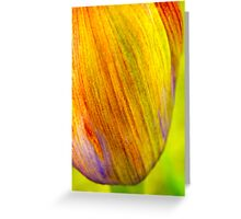 Agapanthus flowerhead Greeting Card
