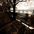 Prague Autumn River Vltava View by dozzie