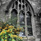 St.Mary in Hailsham (2) by cullodenmist