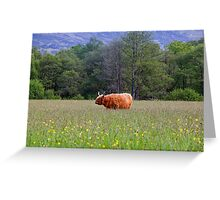 Spring In The Highlands Greeting Card