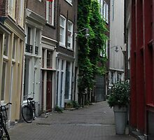 Uneven builings in Amsterdam by stecoley15