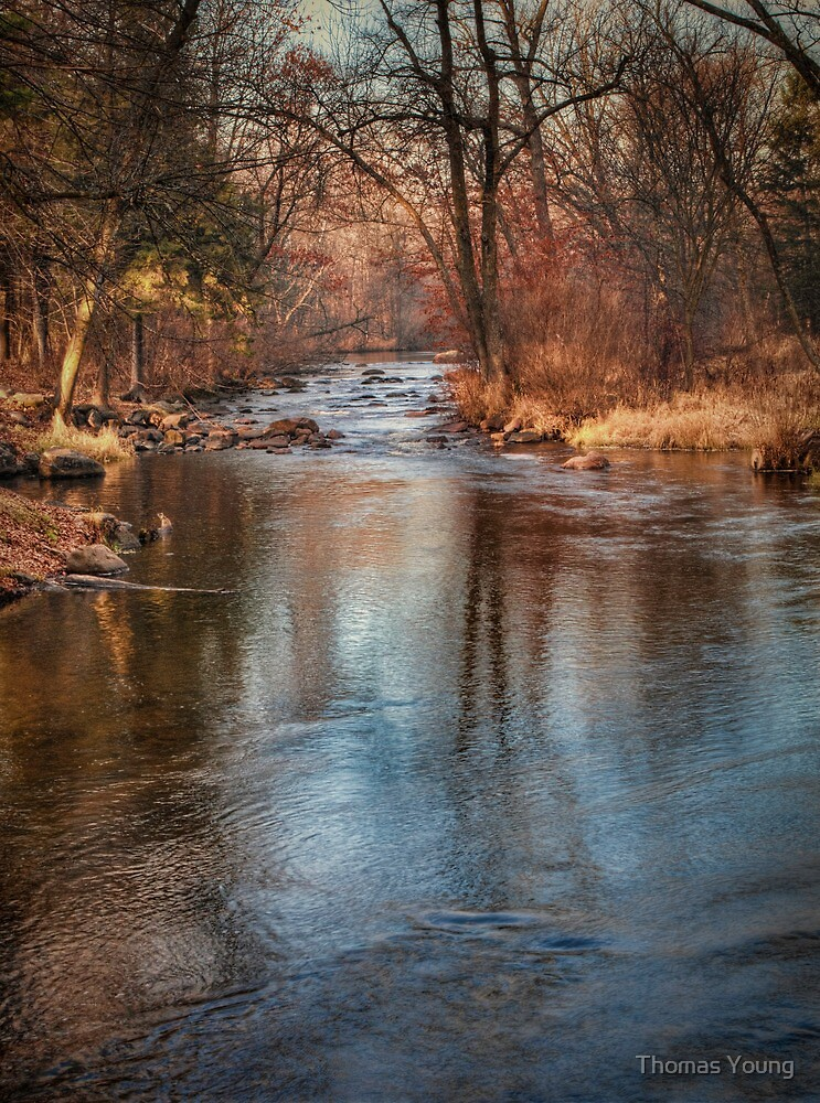 Life Flows On by Thomas Young