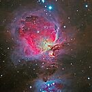Orion Nebula by Cole Pickup