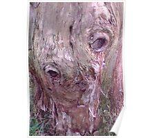 Terrestrial trunk Poster