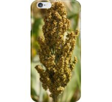 Sorghum Field iPhone Case/Skin