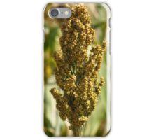 Sorghum Field iPhone Case/Skin