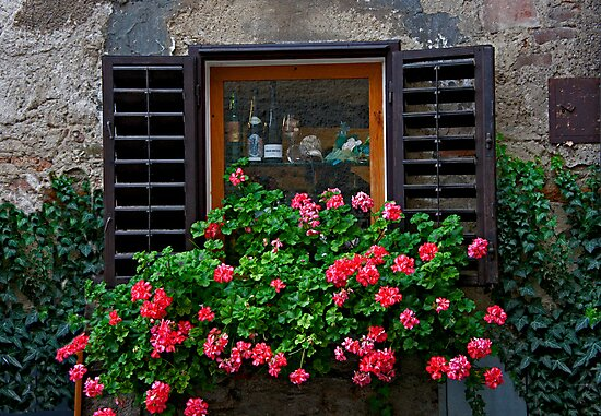 Old World Window by phil decocco