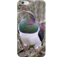 Wood Pigeon New Zealand iPhone Case/Skin