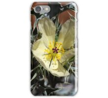 Flower of Mexican Poppy iPhone Case/Skin