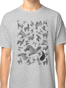 Camelids - Abrace la Diversidad Classic T-Shirt
