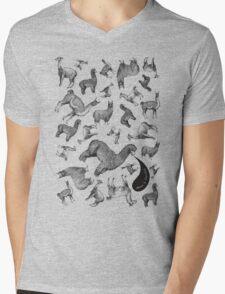 Camelids - Abrace la Diversidad Mens V-Neck T-Shirt
