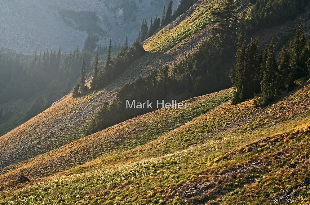 Dreamy Sub-alpine Sunset - Goat Rocks Wilderness by Mark Heller