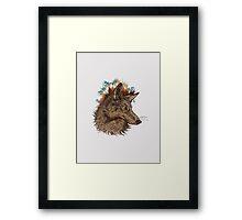 Coyote Framed Print