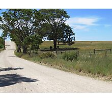 On my way home & horses enjoying the shade. Mt. Pleasant, S.A. Photographic Print